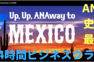【ANA史上最長】メキシコシティ~成田(NH179)搭乗 ~6時間寝て映画5本も観た~